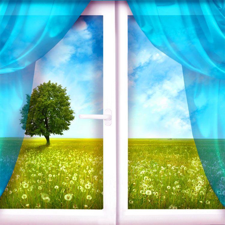 Le frasi e i pensieri sulle finestre rappresentano un modo per aprirsi al mondo spalancare gli - La finestra sul mondo ...