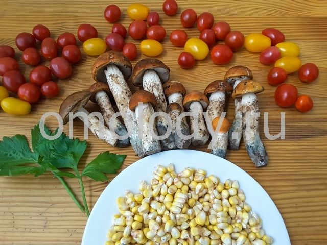 грибы подосиновики