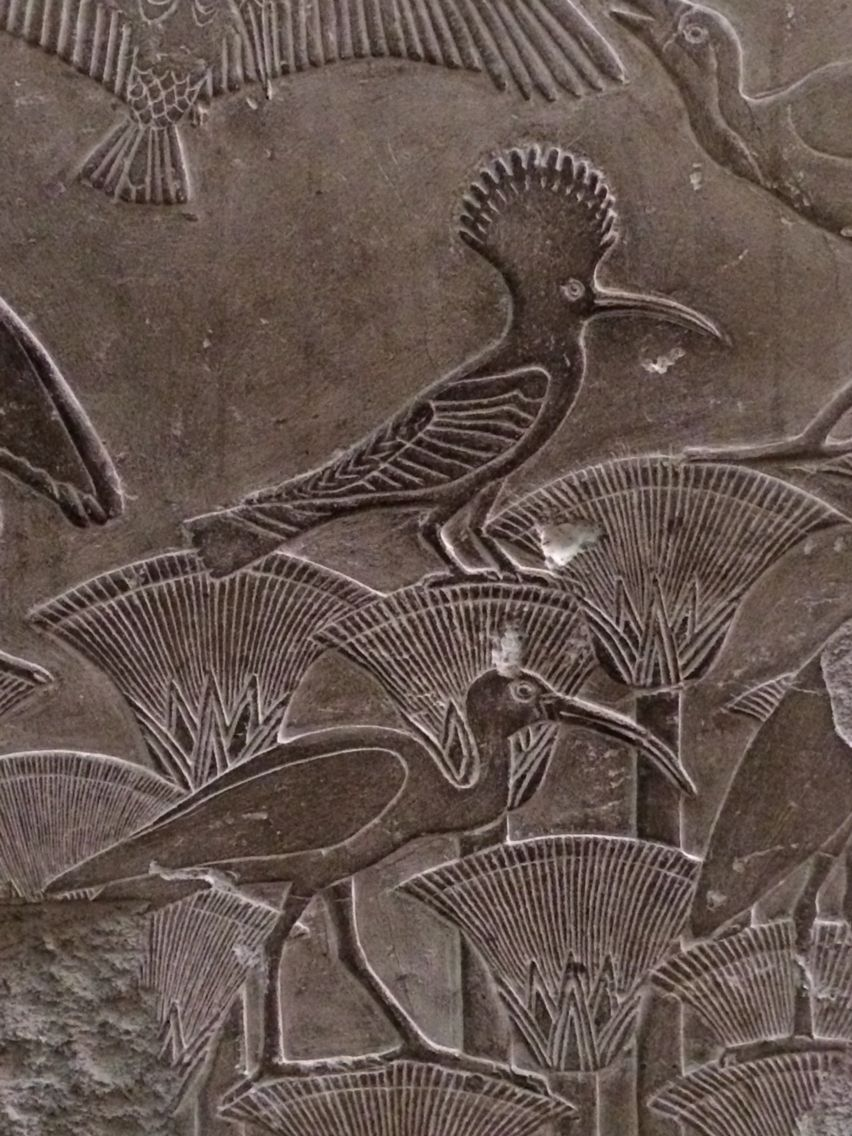 Frieze with lotus blossoms ibis and hoopoe egyptian museum cairo frieze with lotus blossoms ibis and hoopoe egyptian museum cairo izmirmasajfo