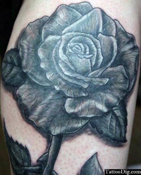 Tattoo Leg Man Rose Flower Black And White: Black And White 3D Rose Flower Leg Tattoo
