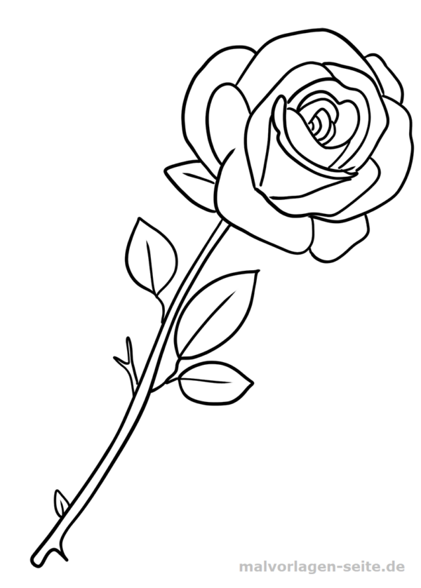 Malvorlage Rose | color pages | Pinterest | Outlines and Craft