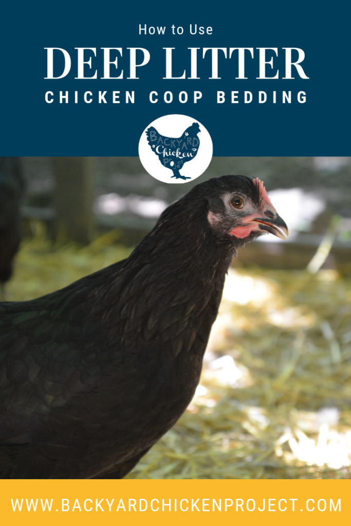 How to Use Deep Litter Method for an Easy Care Coop ...