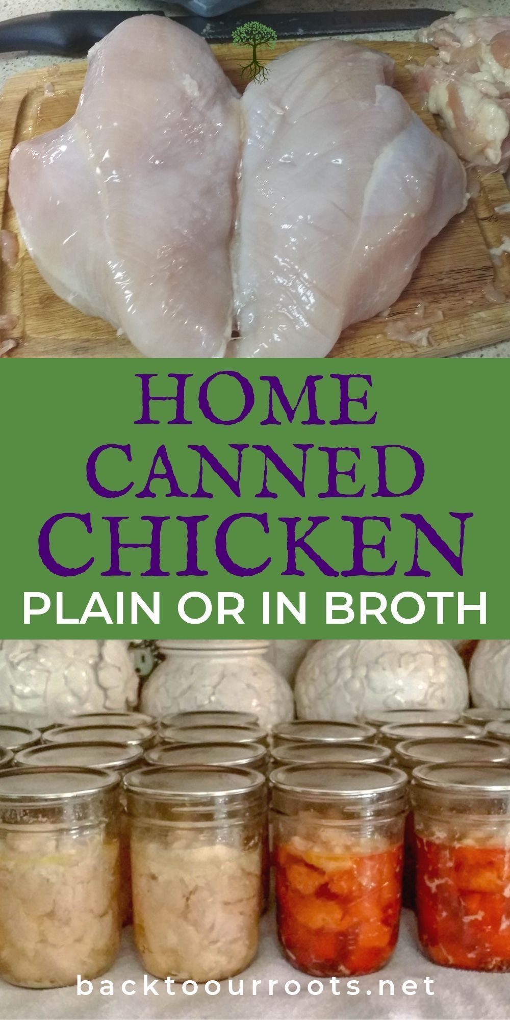 How to pressure can chicken at home easily and safely