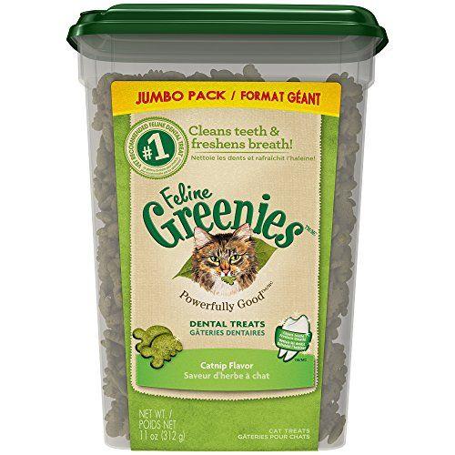 Feline Greenies Dental Treats For Cats Catnip Flavor 11 Oz With Natural Ingredients Plus Vitamins Minerals And Dental Treats Natural Cat Treats Tuna Cat Treats