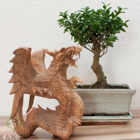 Drache mit Flügel, Holz, ca. 15 cm   Feng Shui Figuren   Skulpturen ...