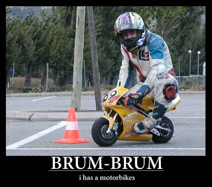 Funny Motorcycle Funny Pictures Fresh Riders Motorbikes