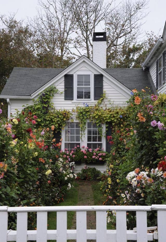 Summer Garden Garden Pinterest Summer garden, Gardens and Summer
