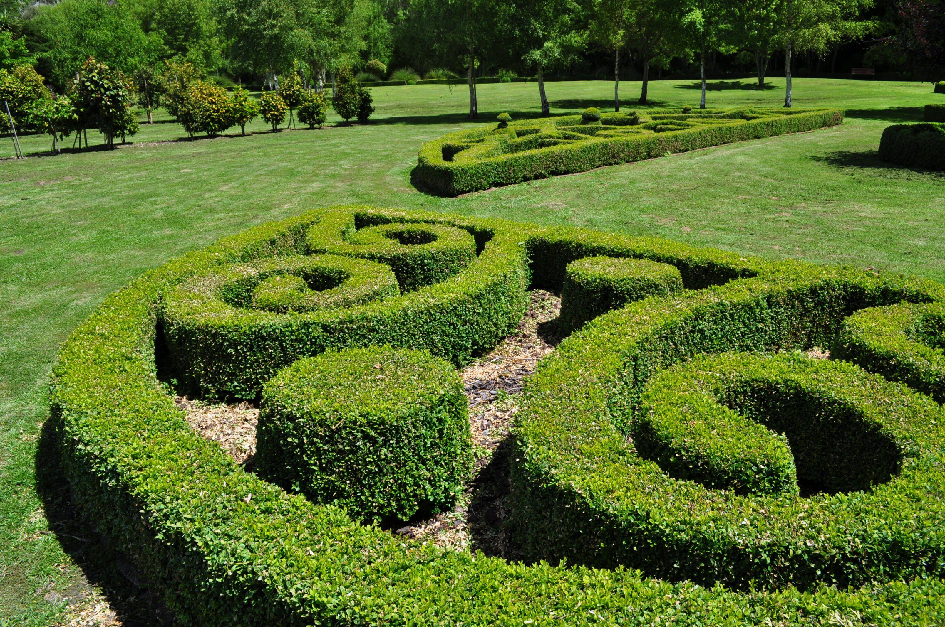 Nz koru form beauty of flowers gardens garden ideas garden nz koru form beauty of flowers gardens izmirmasajfo