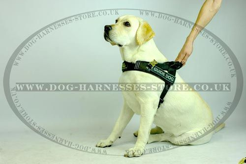 Leather Guide Dog Harness With Long And Short Handles Dog