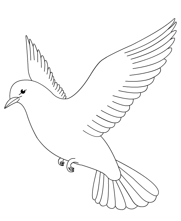 Birds Coloring Book Pages Color Dove Coloring Pages Animal Coloring Books Coloring Books
