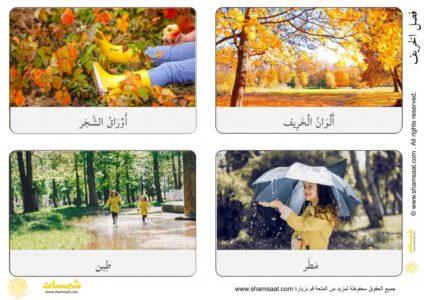 بطاقات فصل الخريف مفردات ومظاهر بصور فوتوغرافية 1 Polaroid Film Film Camera