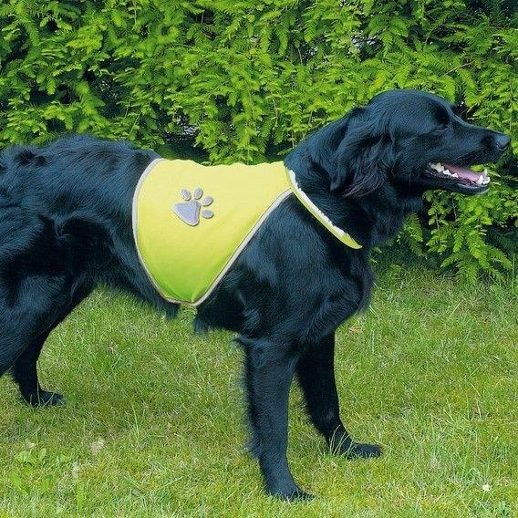 Panciotto di sicurezza per cani, riflettente, in poliestere. Munito di velcro per un regolzione ad hoc su addome e collo. La banda e l'impronta riflettono l luce e lo rendono ideale per situzioni di scarsa visibilità come buio o nebbia.