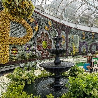 e8ac808b4a3ec2e909357cb3101cf132 - What To Do In Royal Botanic Gardens Sydney