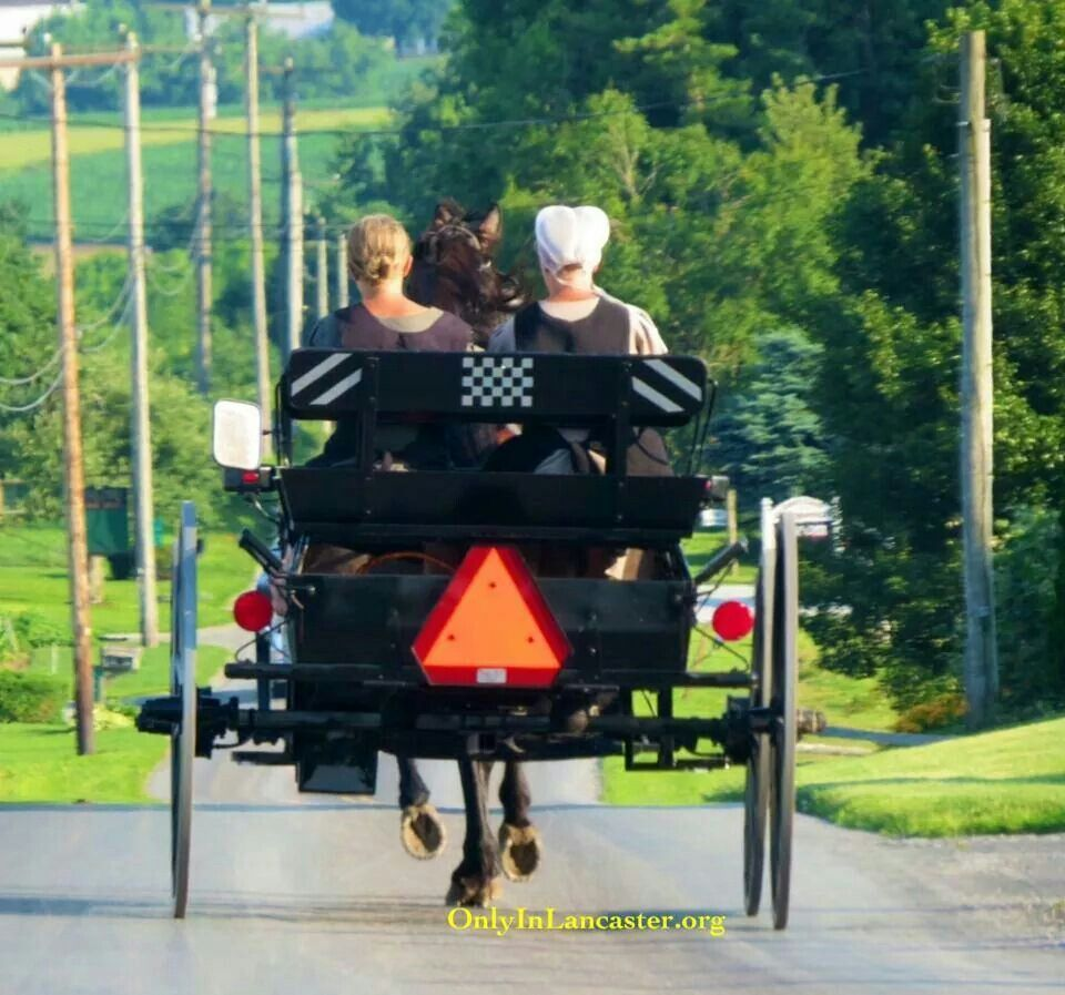 17 best images about amish buggy pennsylvania 17 best images about amish buggy pennsylvania amish man and amish