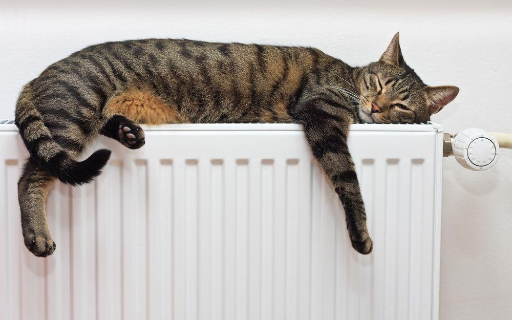 В Лидском районе включают отопление.