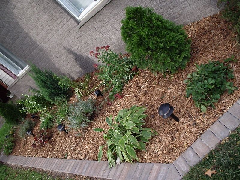 Lawn Care and Garden San Antonio, TX Lawn care, Outdoor