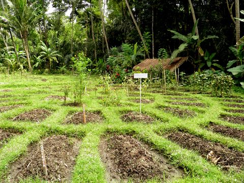 Permaculture Design Certification Course Permaculture