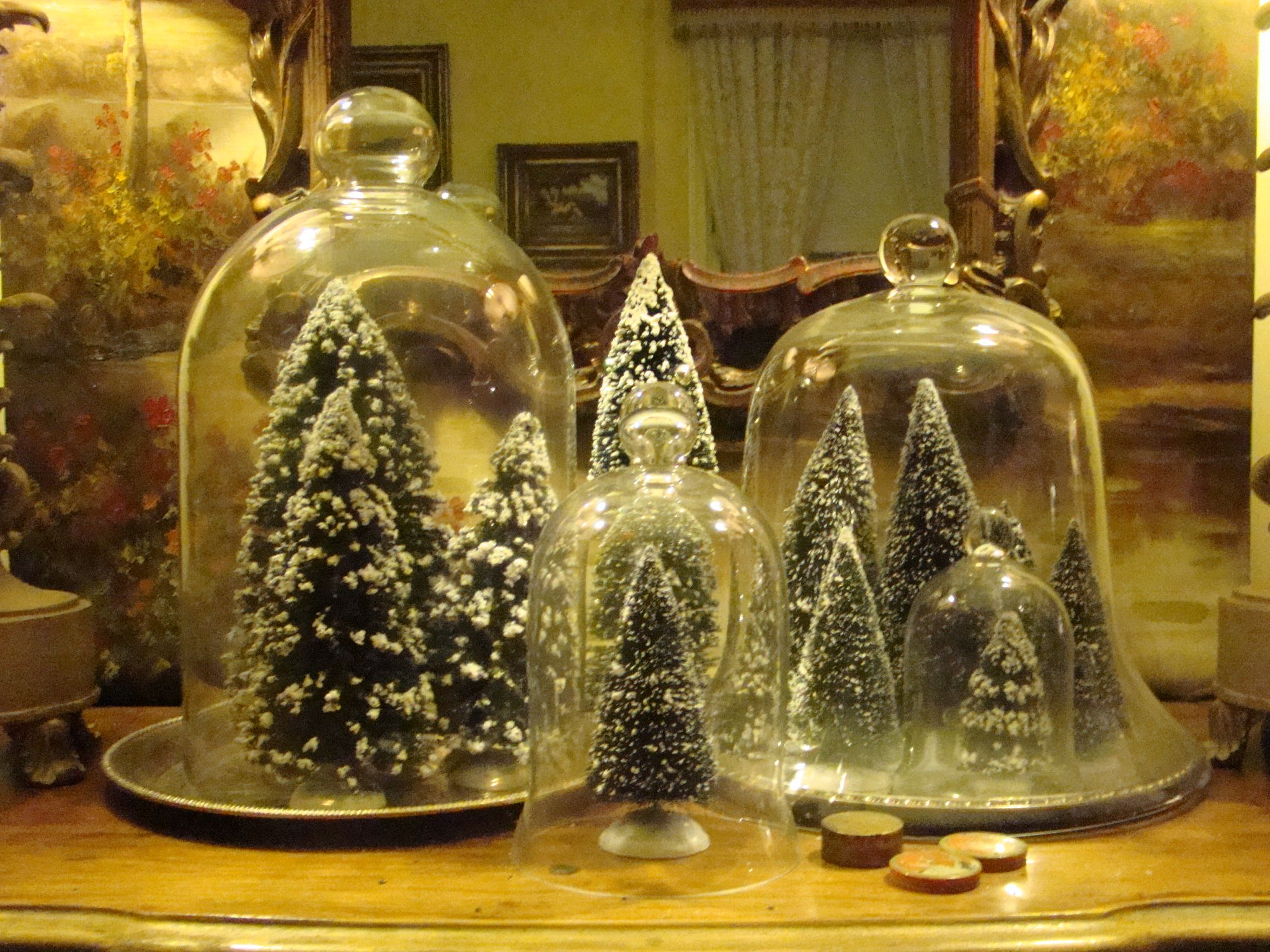 Lovely Christmas cloche display~ The cloche was originally used as a covering for protecting plants from cold temperatures.