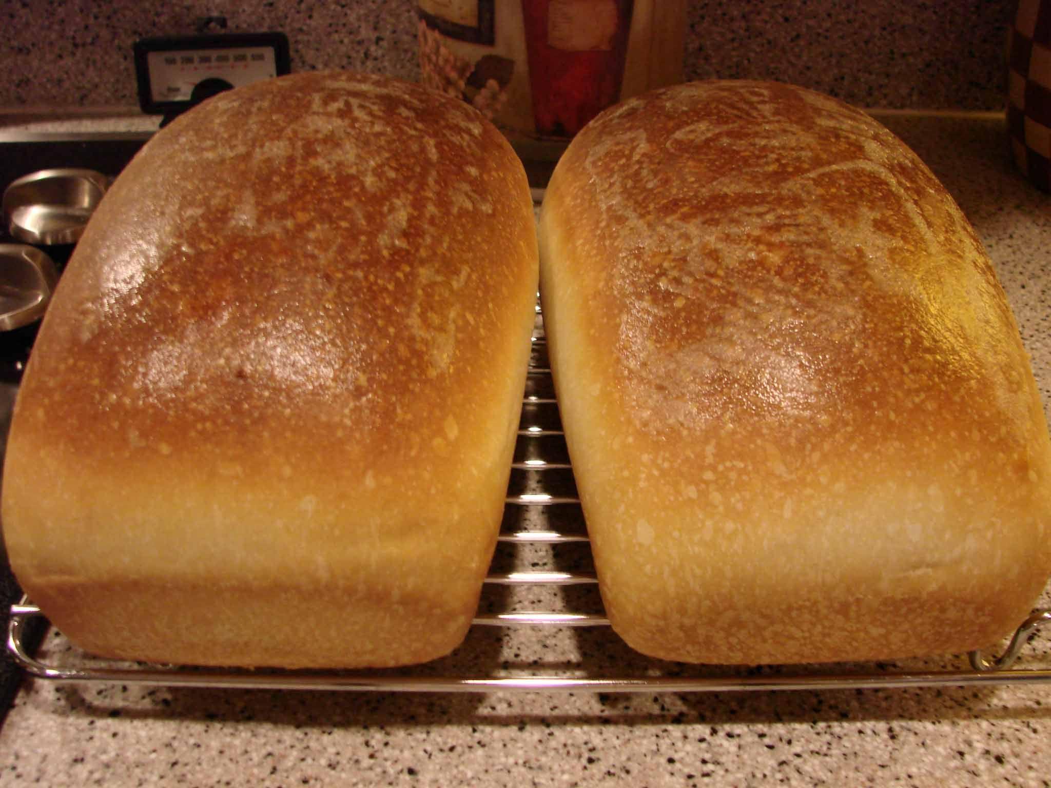 recipe: sourdough potato bread starter [30]