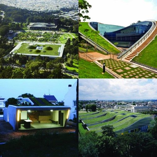 Green Roofs Green Roof Green Architecture Architecture