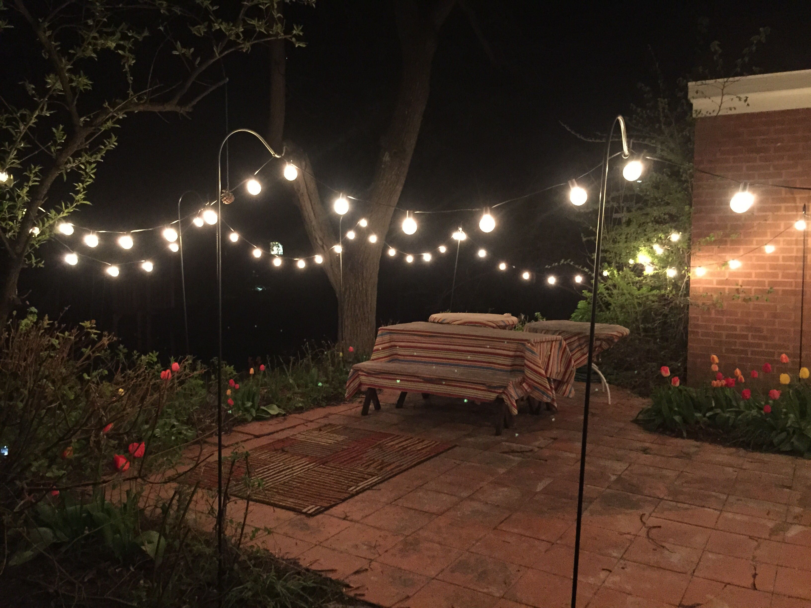 Globe string lights 2 in bulbs 50ft black wire outdoor clear we love how our customer ac hung globe lights from shepherds hooks around their patio they said i like how the bulbs came separate so i could workwithnaturefo