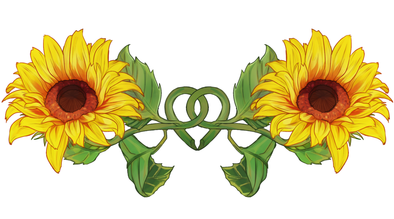 Resultado de imagen para sunflower tumblr | Daisy flower ...