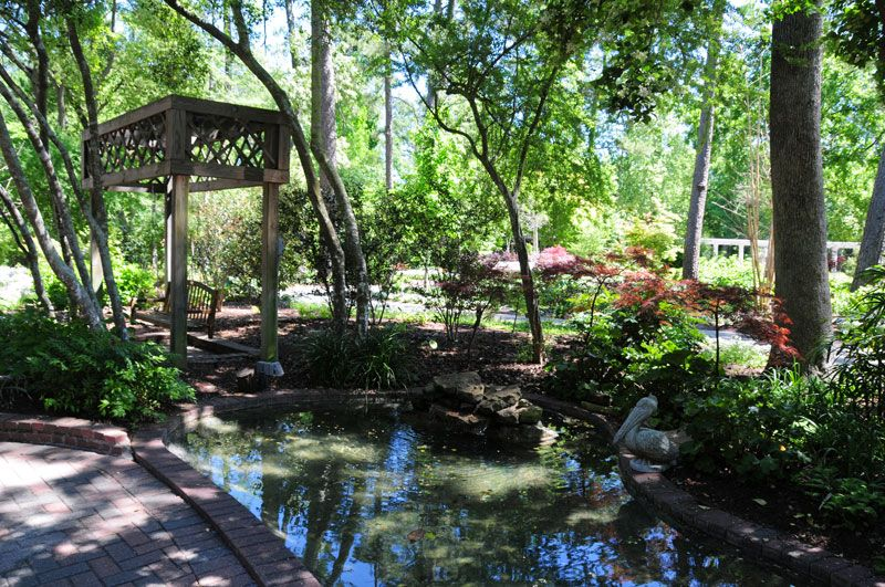 Hidden Gardens in Houston Mercer Arboretum and Botanic