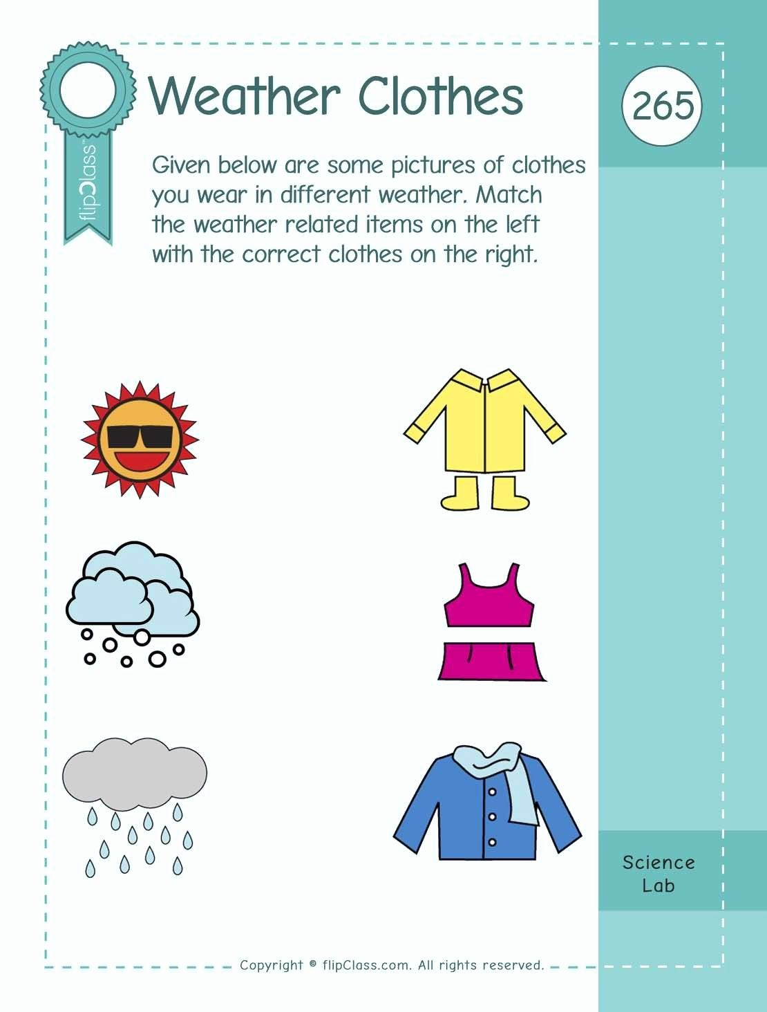 Worksheets For Kindergarten Evs In