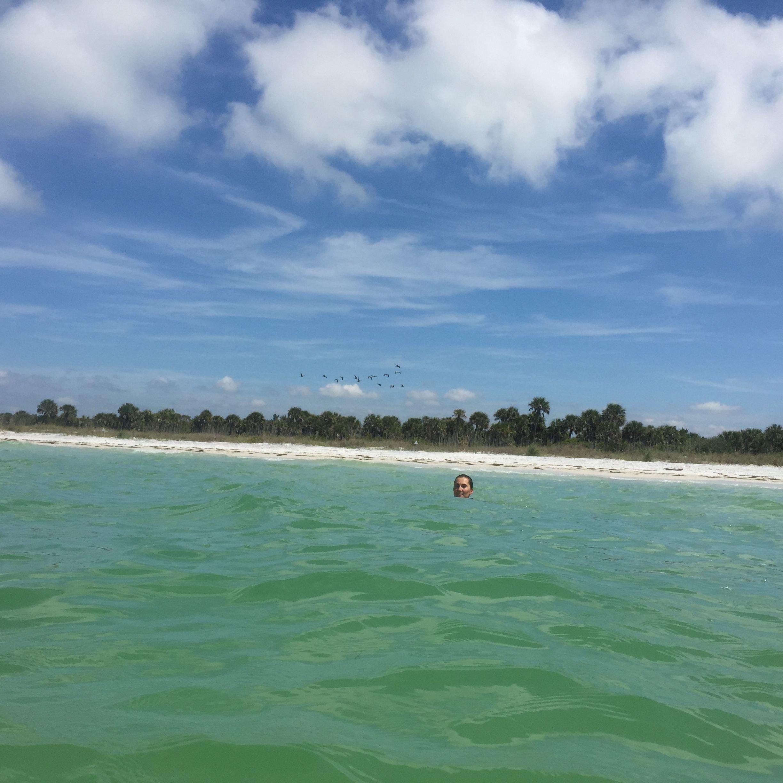 Caladesi Island Florida: Caladesi Island State Park, FL (With Images)