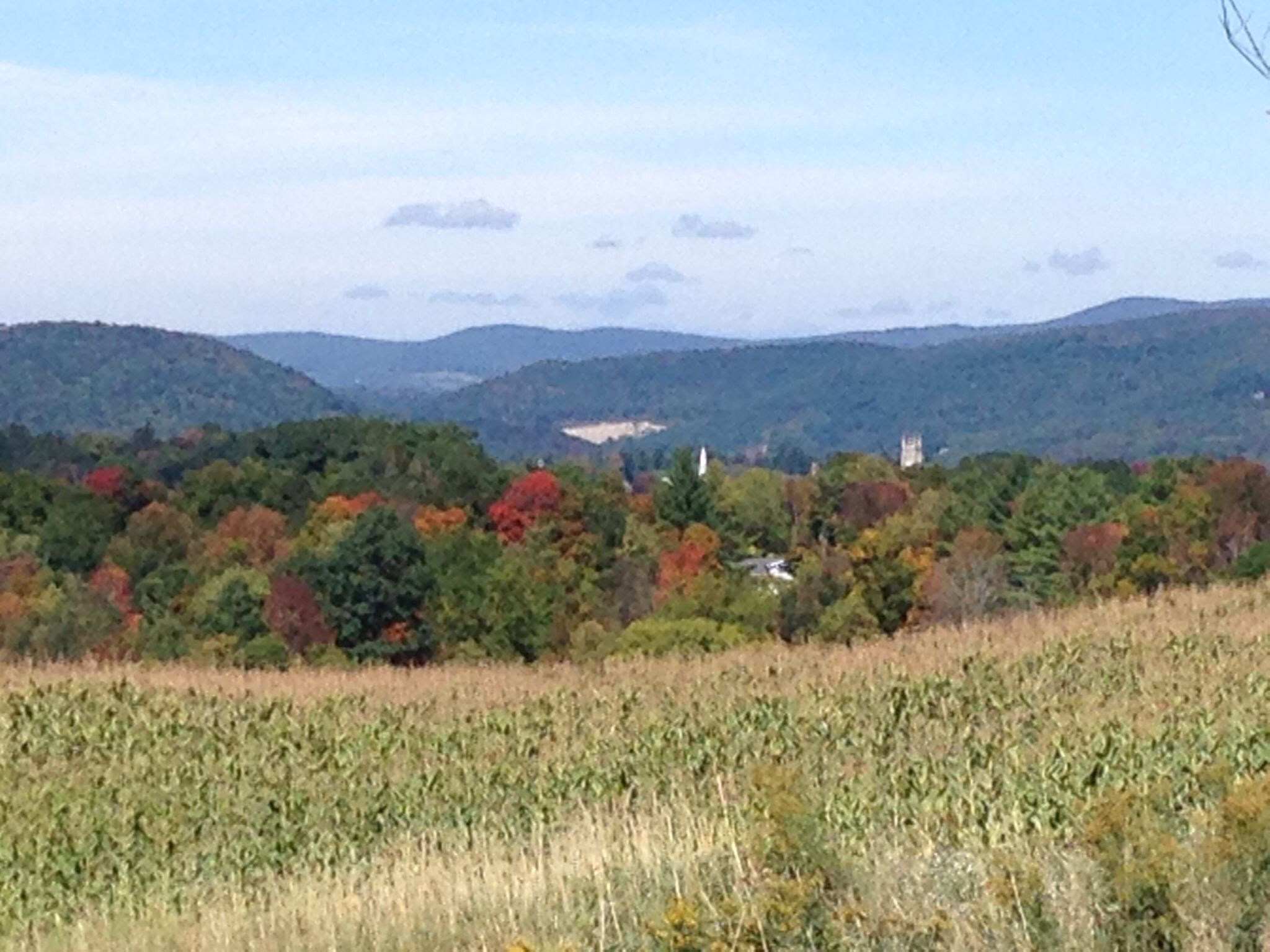 Dog Friendly Bed And Breakfast Hudson Valley