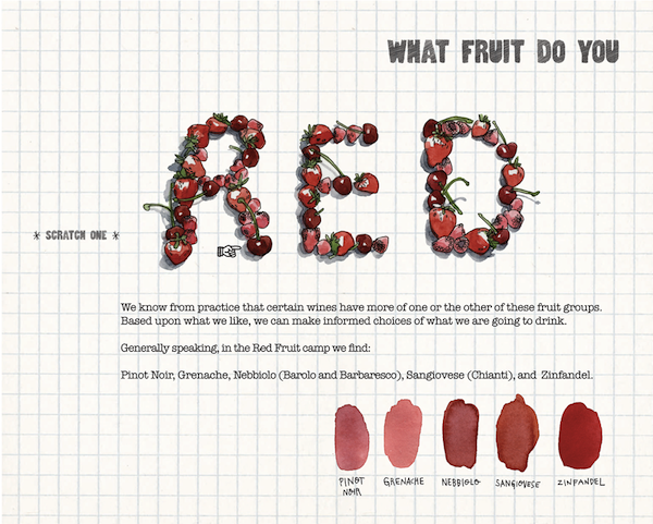 A Fun Illustrated Scratch-And-Sniff Guide To Becoming A Wine Expert