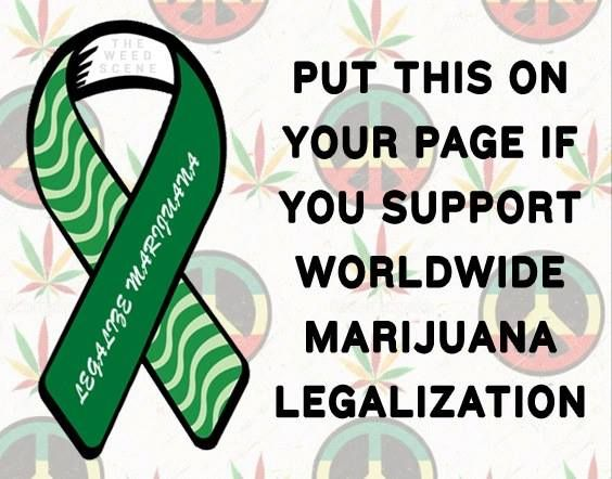 Please protest the removal of our 100,000 fb fans by sending a petition here : https://www.facebook.com/help/contact/306836472662147 Let them know what you think of The Weed Scene, what you think of Facebook's unilateral, unfair executioner approach, and ask them to reverse this action at least until The Weed Scene has been properly informed of the charges and has a chance to defend itself.