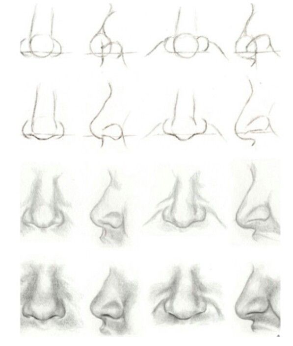 Anatoref Nose Drawing Drawings Lips Drawing