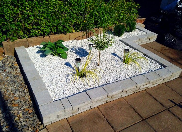 aménagement petit jardin, arbre nain, gravier, graminées