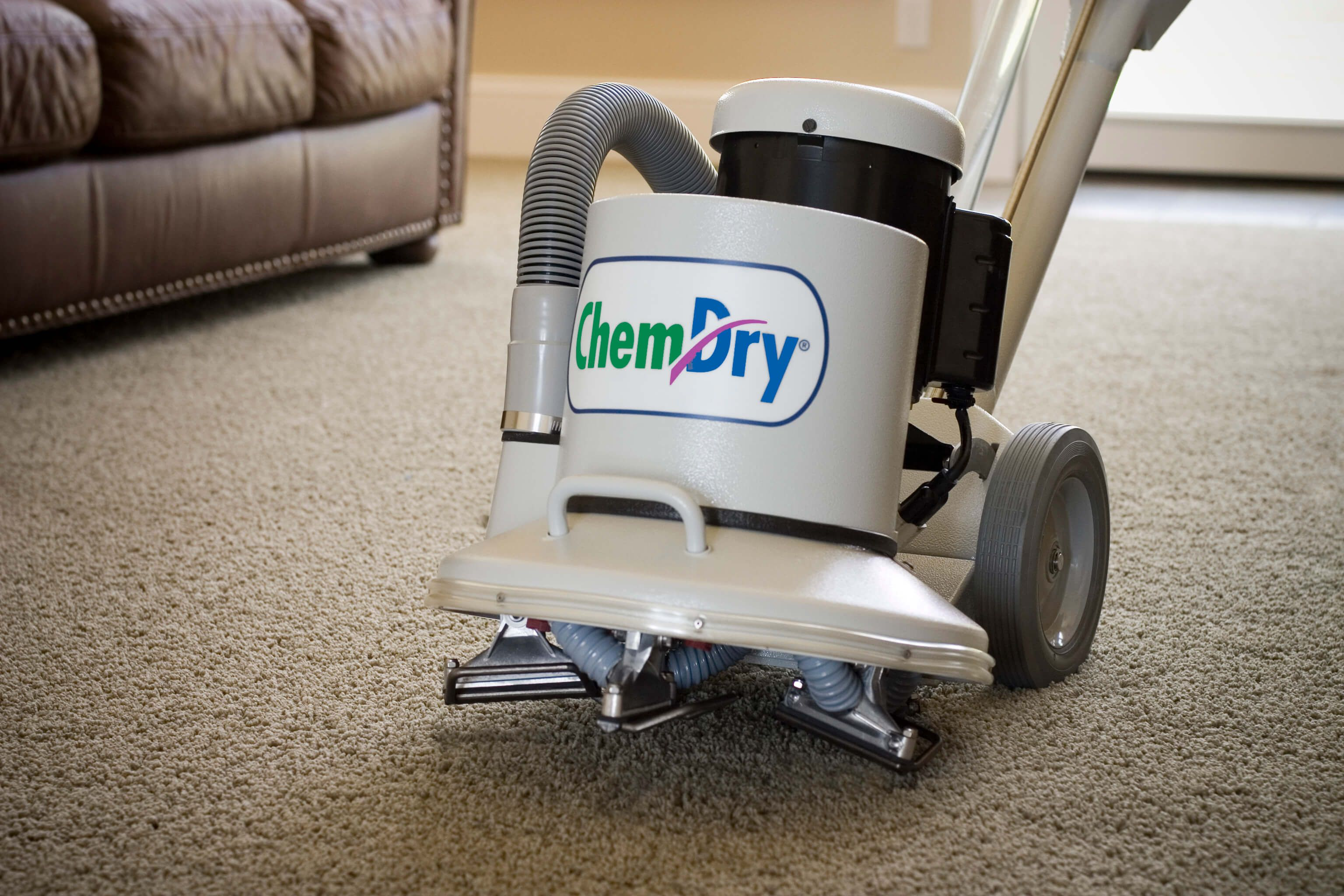 Pin de Independent Chem-Dry en Carpet Cleaning Tips | Pinterest