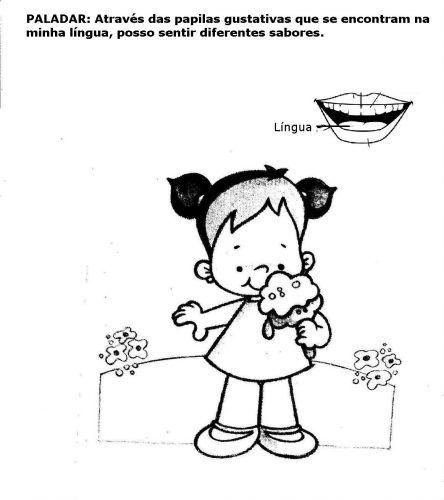 Atividades Para Educacao Infantil Os 5 Sentidos Educacao