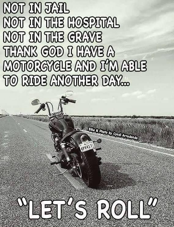 Pin by alana claplanhoo on Harley girl stuff | Adventure ...