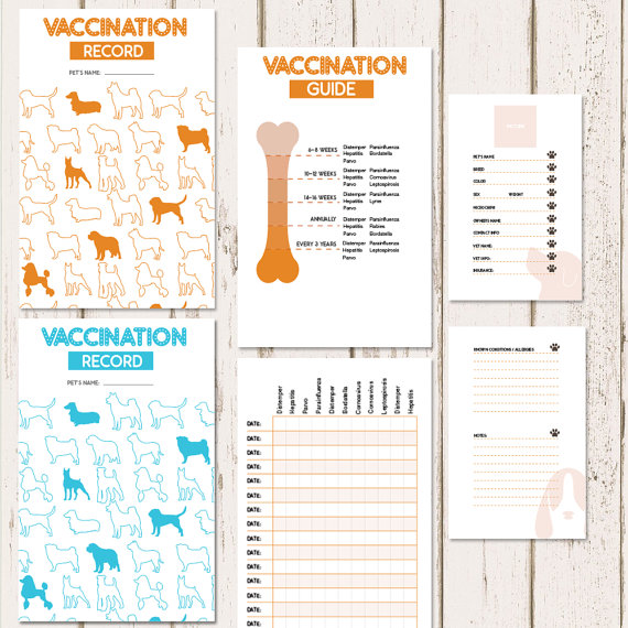 Printable Dog Vaccine Health Record Pet Care Record Book Instant