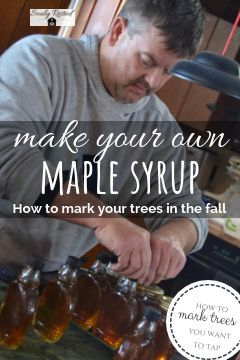 Make Your Own Maple Syrup (part 1) Maple syrup, Survival