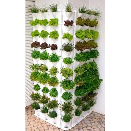 Jard n vertical minigarden huerto vertical casero for Jardin vertical interior casero