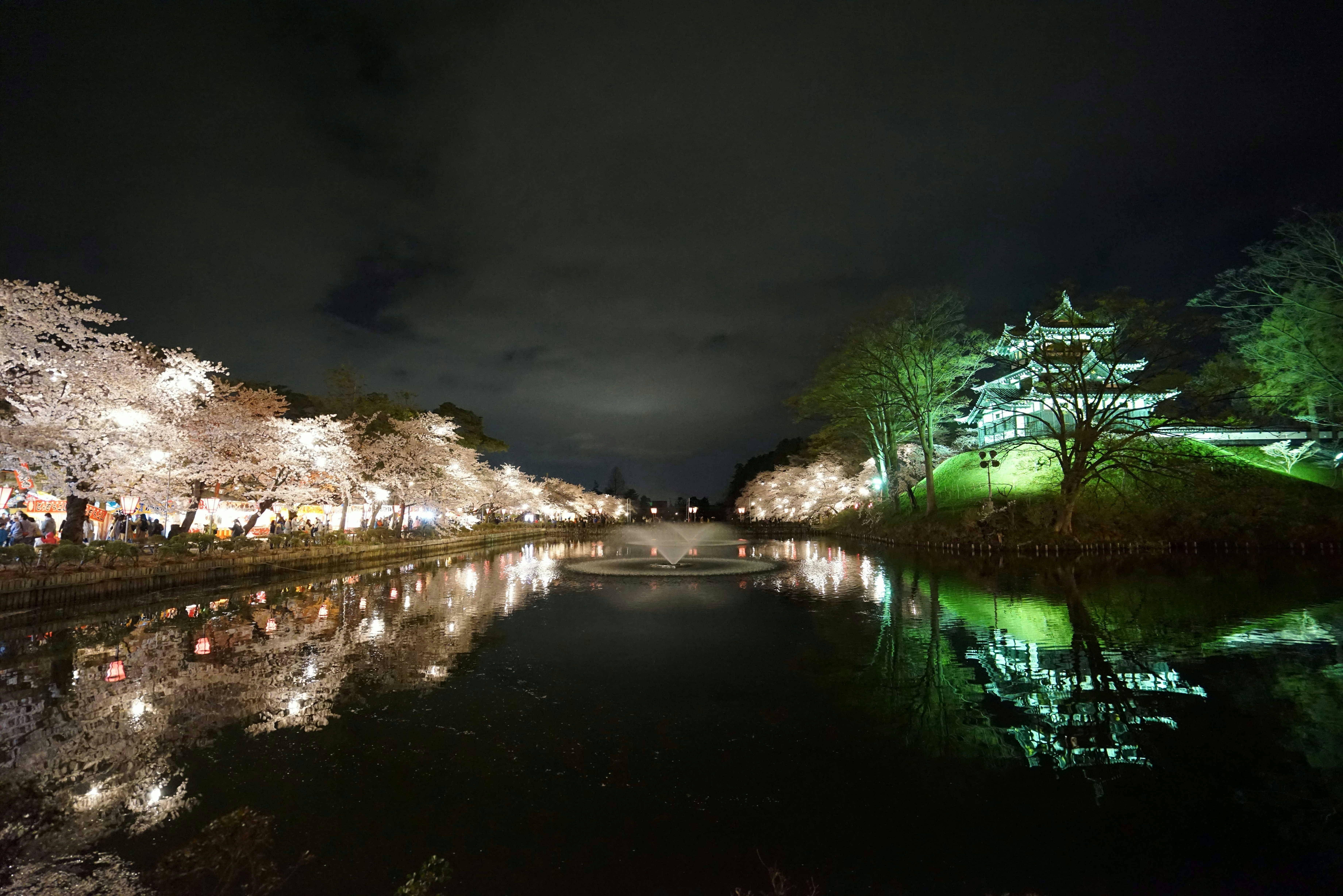 203:「高田公園の観桜会です。流石に規模の大きい夜桜ですね。」@高田公園