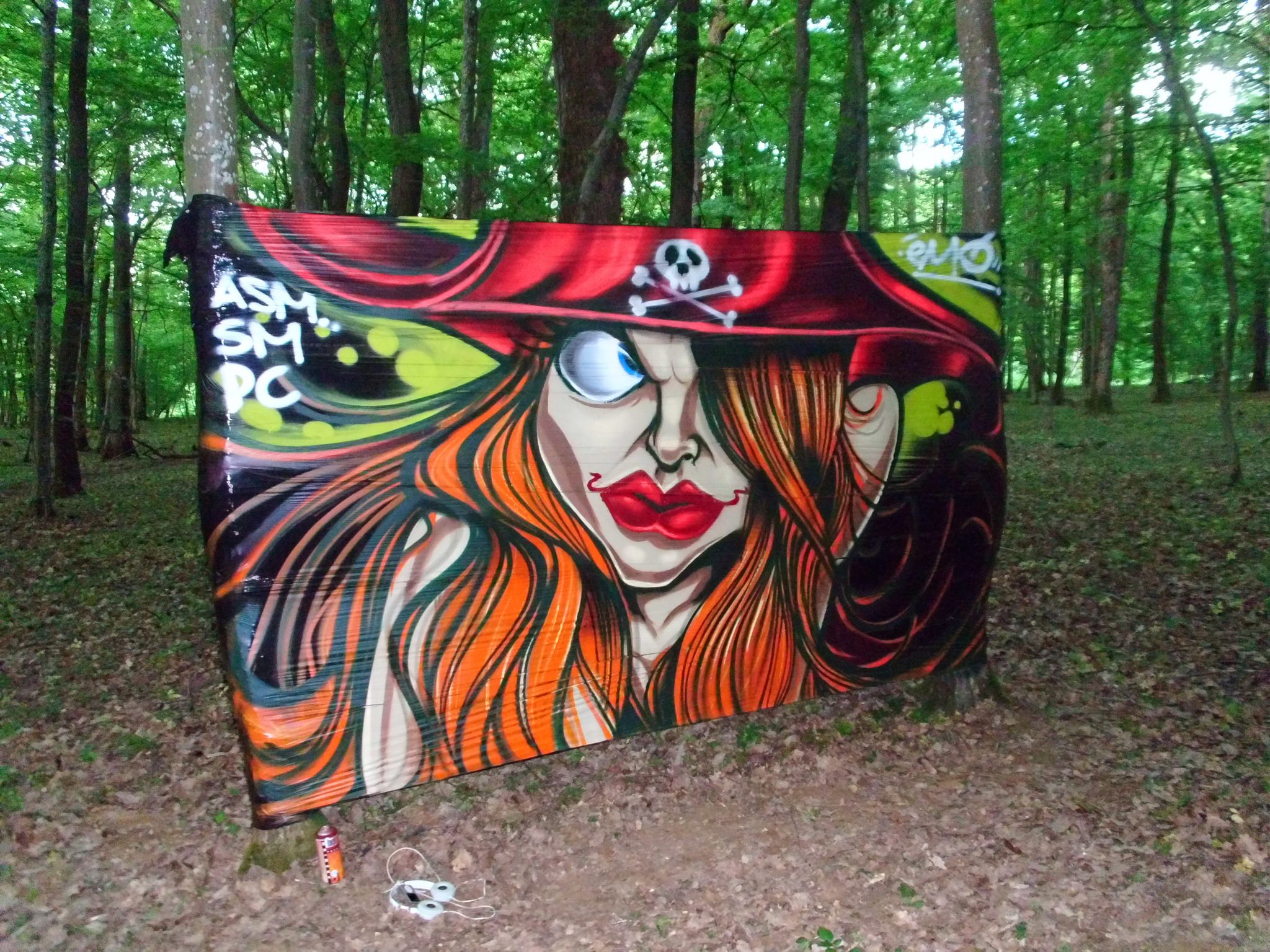 Graffiti art on wood - Lady Pirate In The Wood By Asm Crew L Cellograff