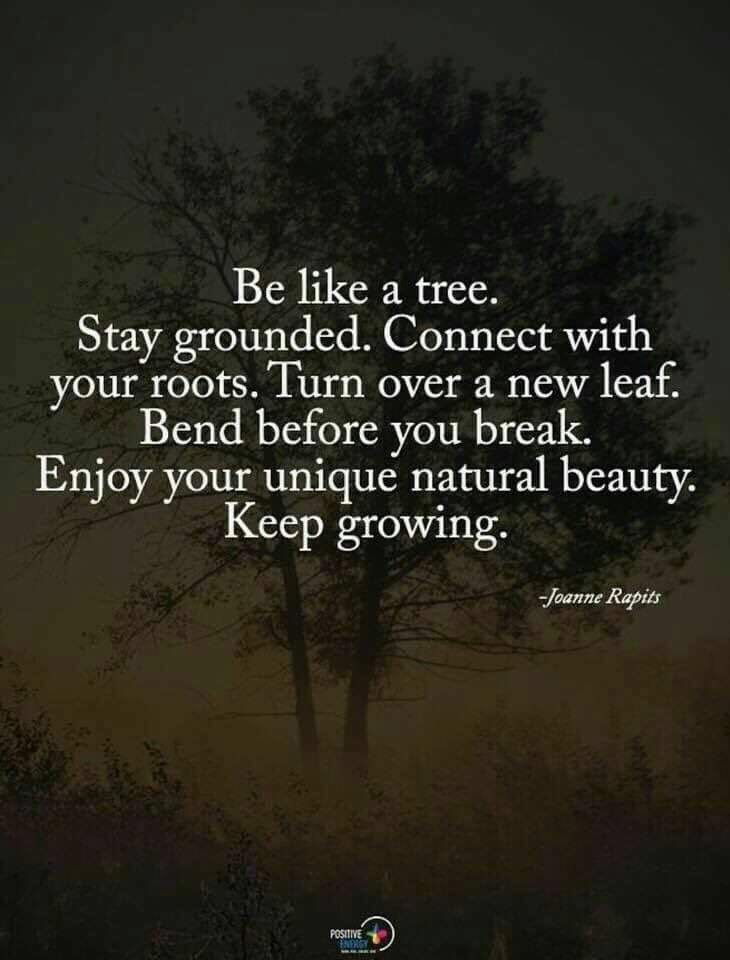 quotes. wisdom. advice. life lessons   true that   Quotes ...