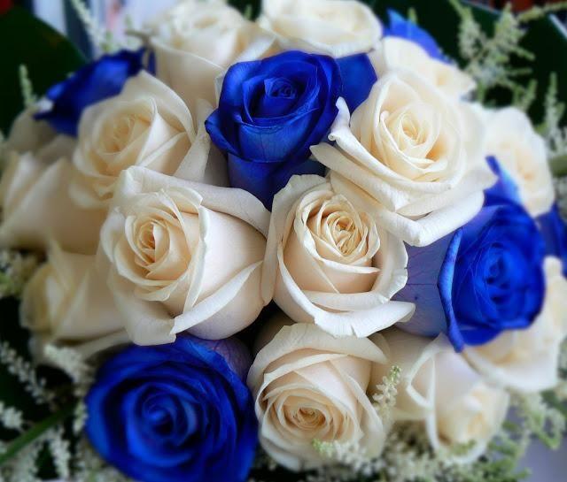 Bouquet Sposa Blu E Bianco.Matrimonio Bianco E Blu Cinzia Ludovico Nel 2020 Blu Nozze