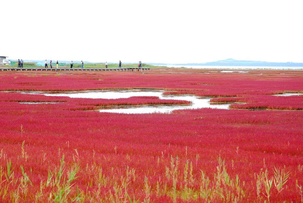 「北海道 能取湖」の画像検索結果