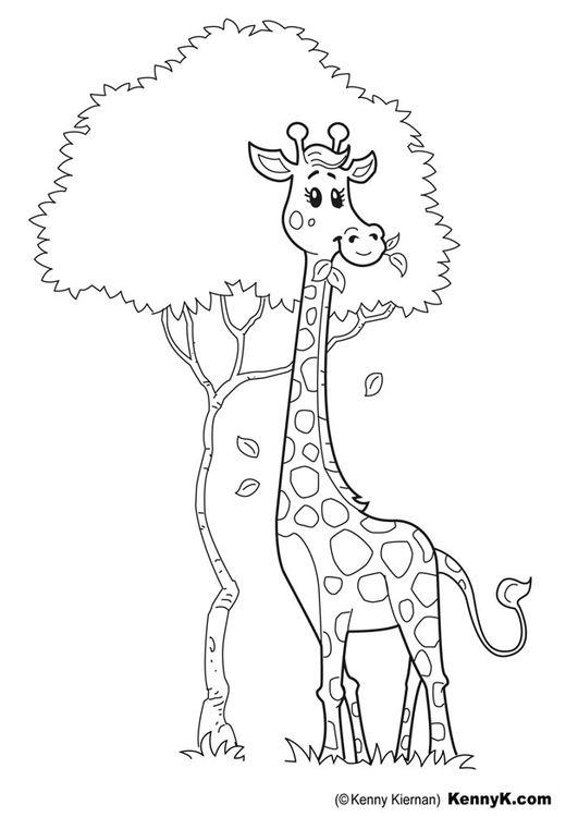 Una jirafa para bebes Marcos para fotos infantiles  ESCOLAR
