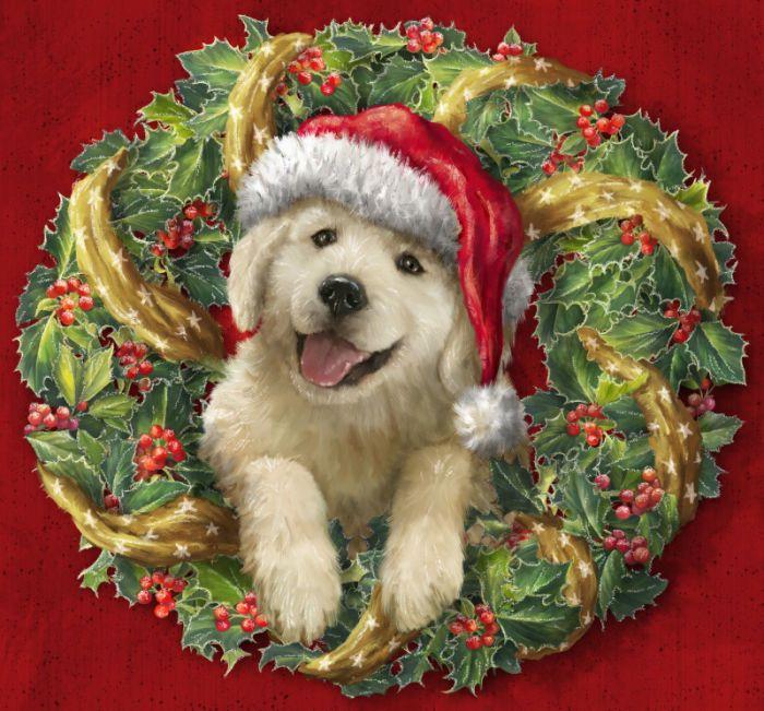 Marcello Corti Christmas WreathMarcello Corti was born in