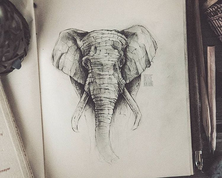 Illustrations · pencil drawing