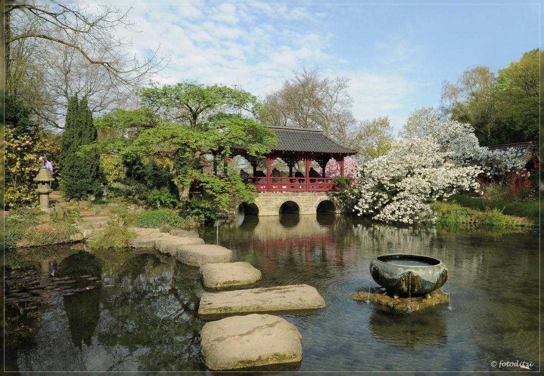 Japanischer Garten Leverkusen Japanischer Garten Leverkusen Japanischer Garten Garten Ideen