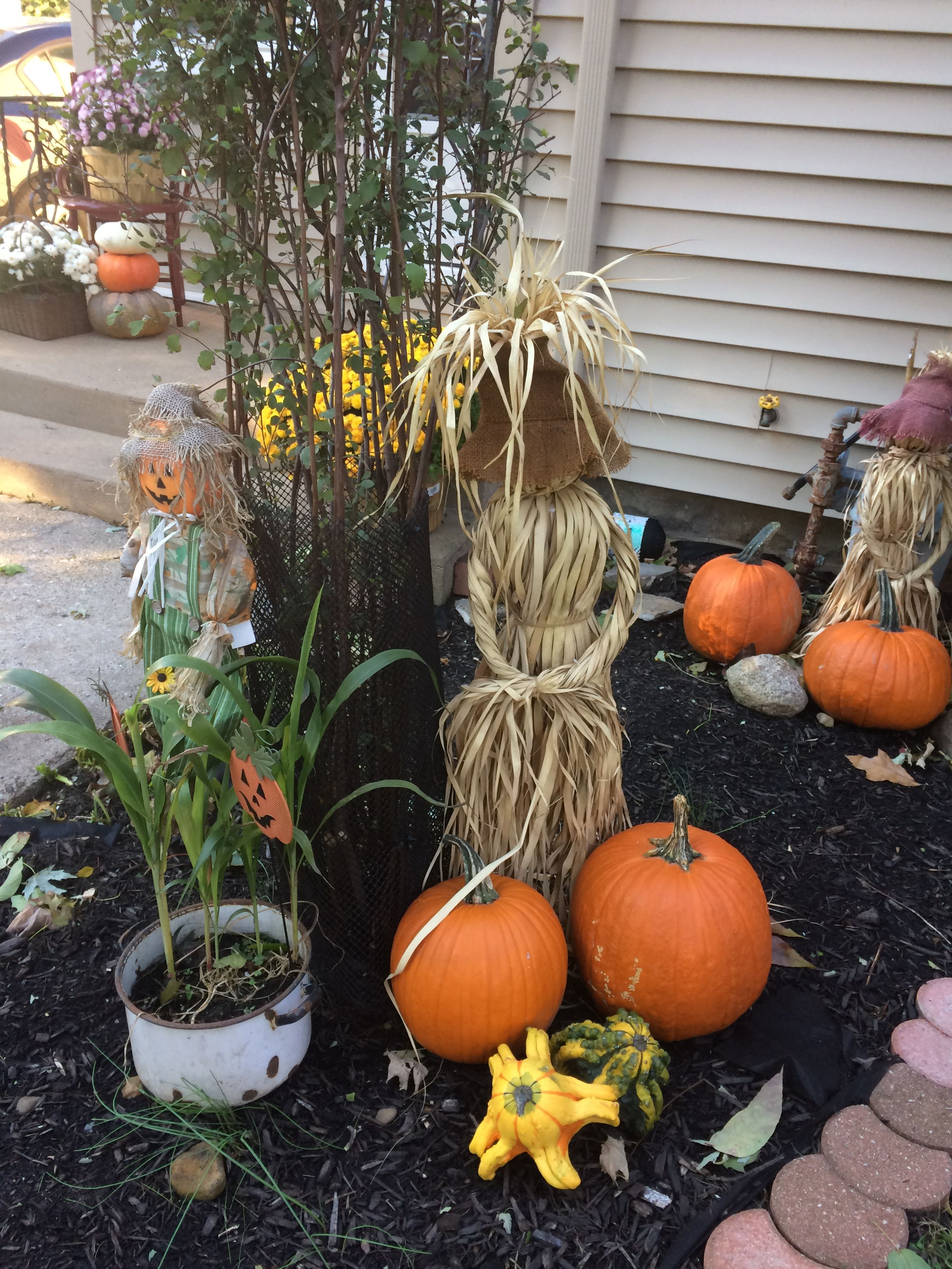 Pin by Deborah Taylor on Fall Pumpkin, Vegetables, Food